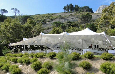 Previous Image : usa tent - memphite.com